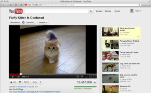embed-youtube-page